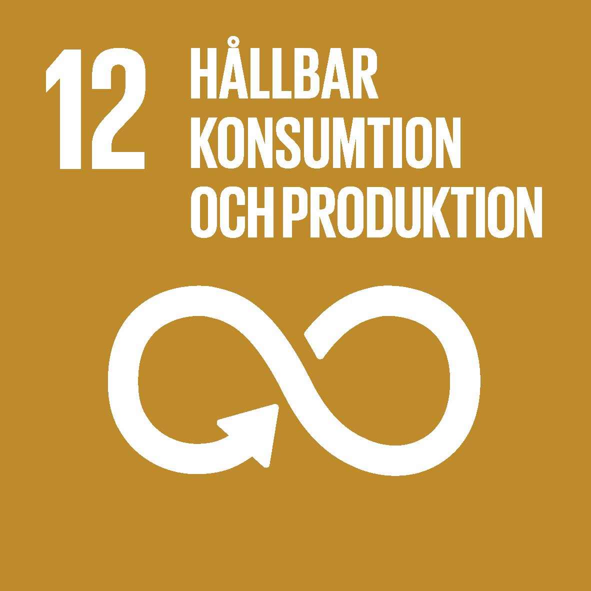 Sustainable_Development_Goals_icons-12